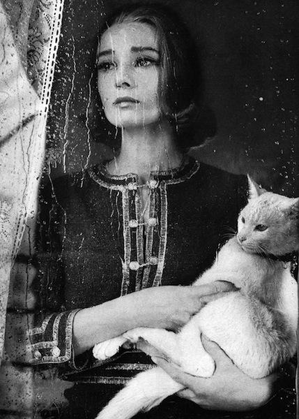 Audrey by Avedon